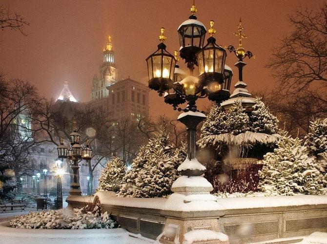 Центральный парк зимой