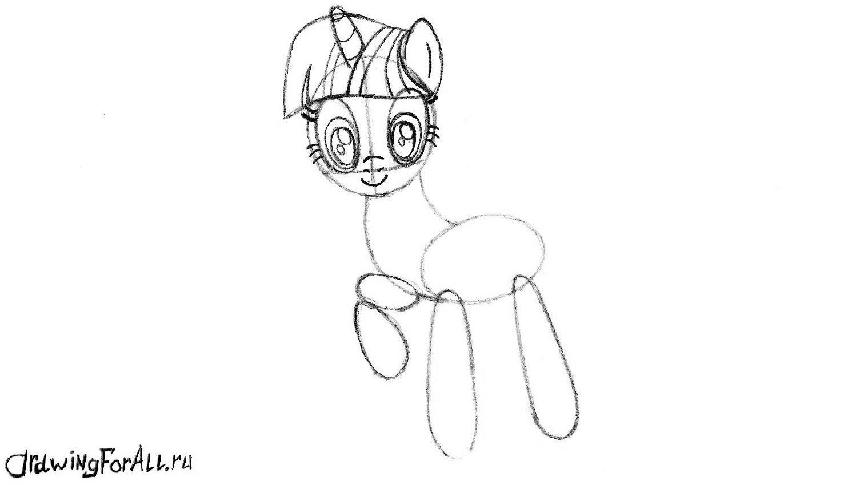 лицо пони