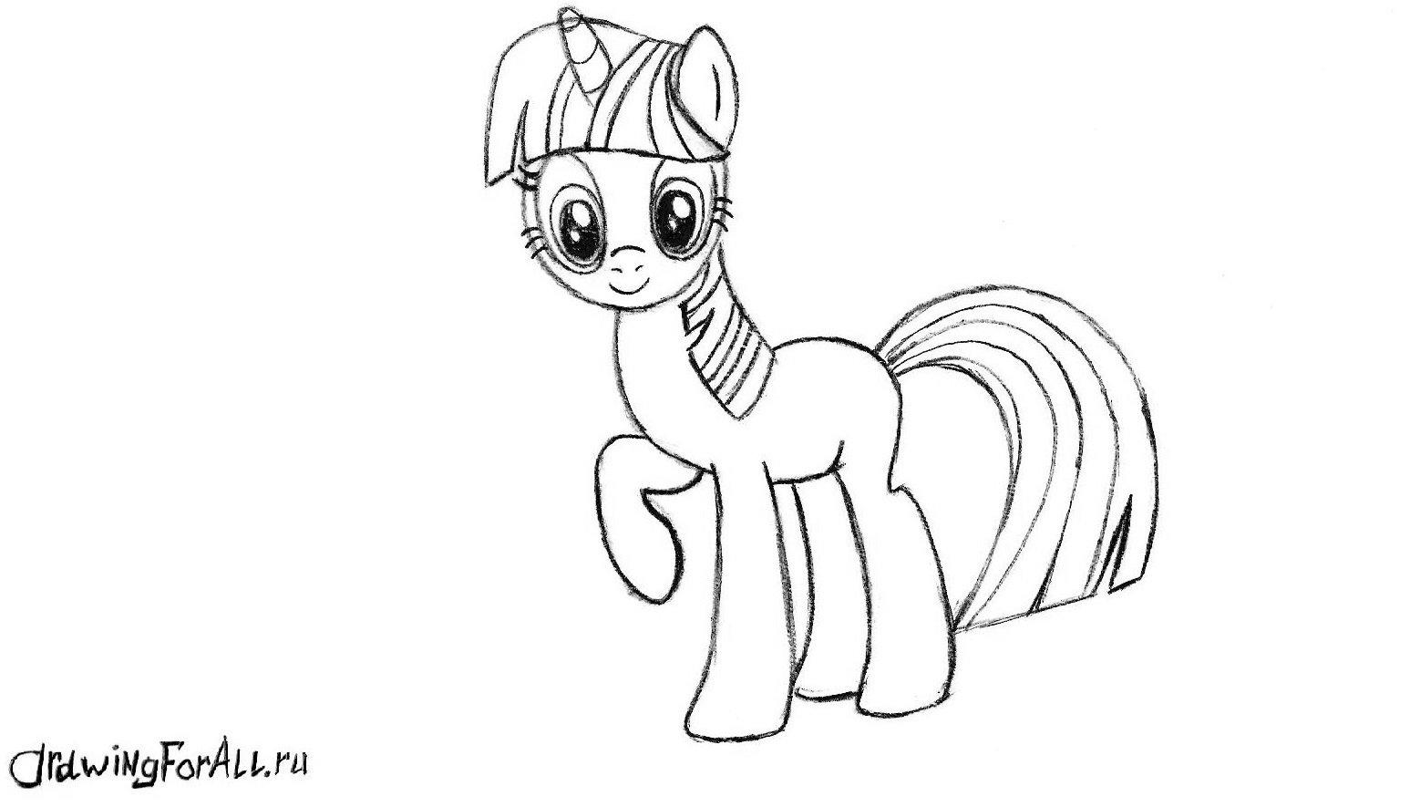 хвост пони