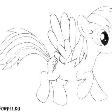 """Как нарисовать пони Радугу Дэш из """"Дружба это чудо"""""""