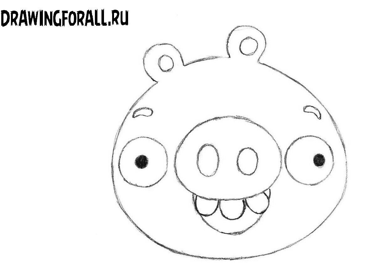 Как нарисовать Энгри Бёрлз свинью карандашом