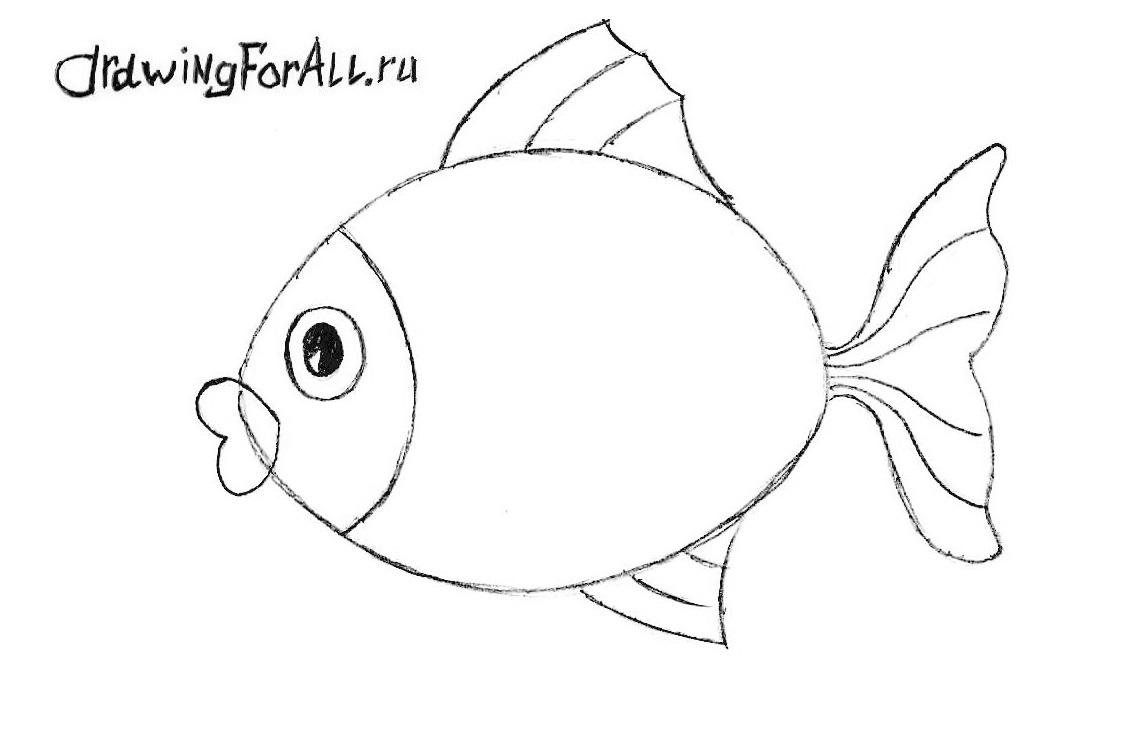 как нарисовать рыбу видео