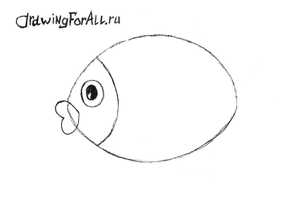 как нарисовать рыбу карандашом поэтапно