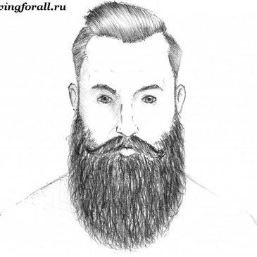 Как нарисовать бороду
