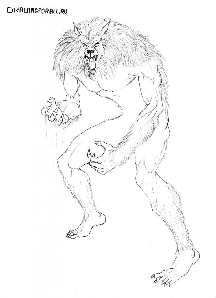 как нарисовать вервольфа карандашом