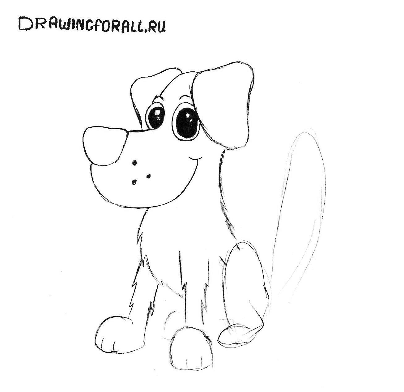 как нарисовать собаку для начинающих
