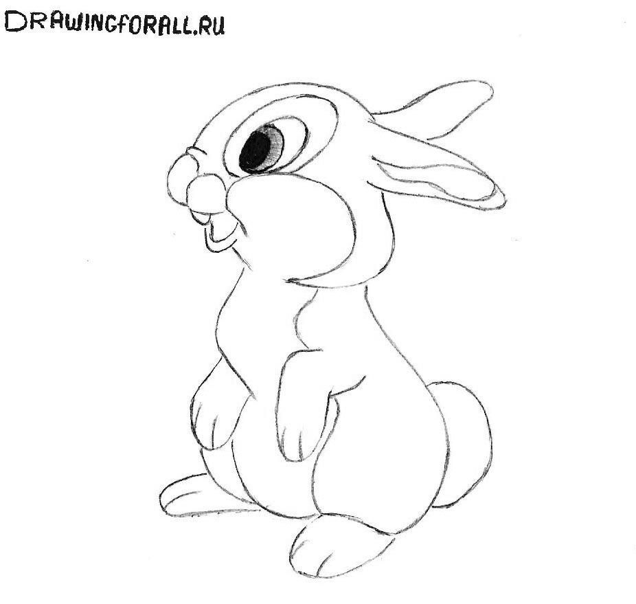 нарисовать зайца