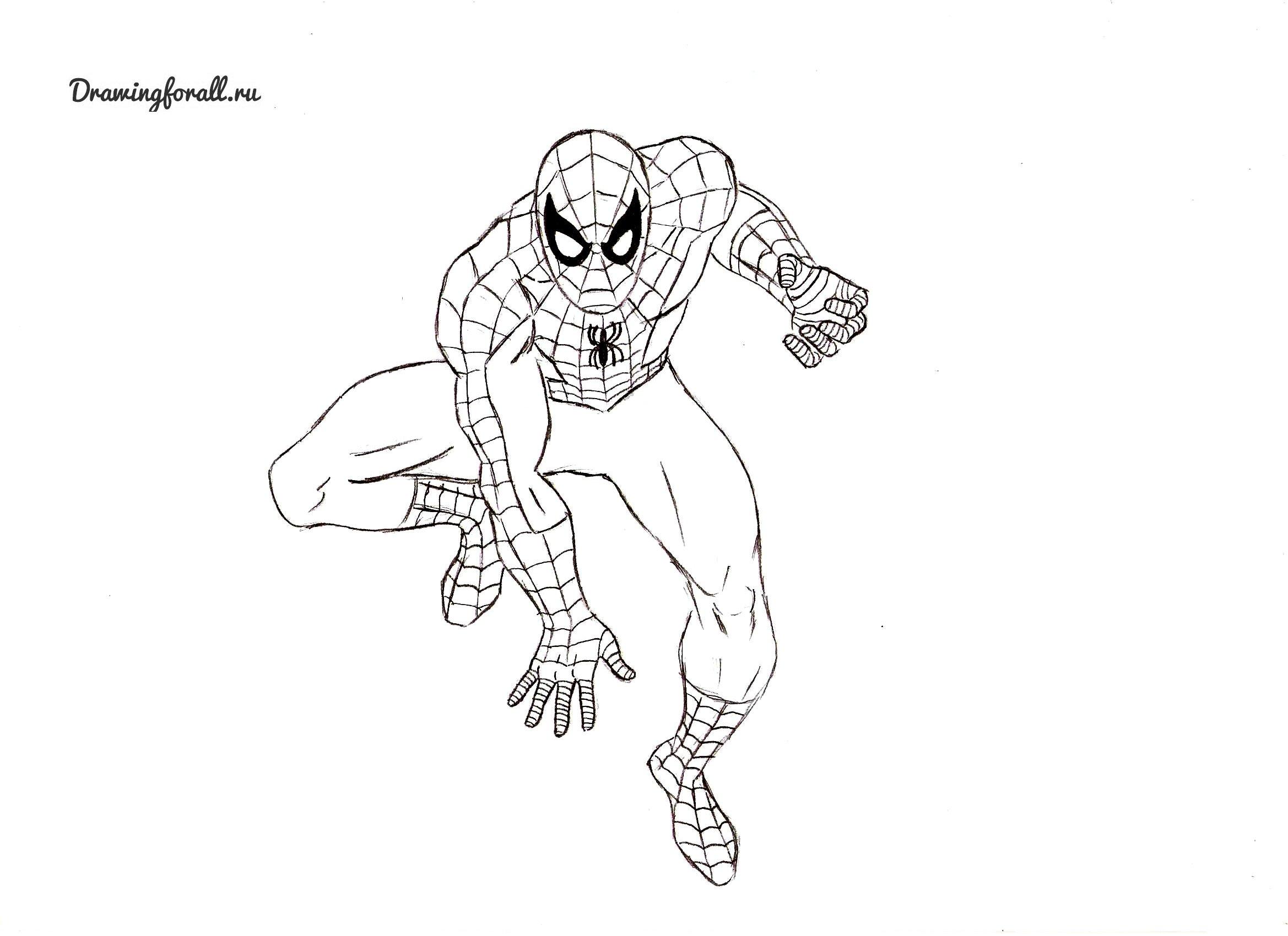 Рисунок человека паука карандашом в полный рост поэтапно вовсе