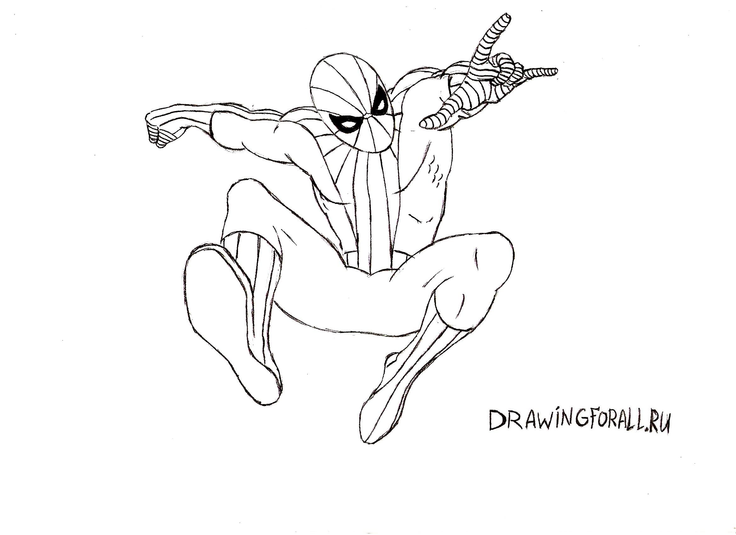как нарисовать спайдермена