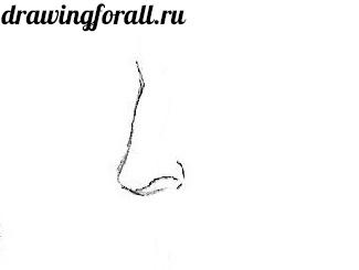 как нарисовать нос карандашом поэтапно