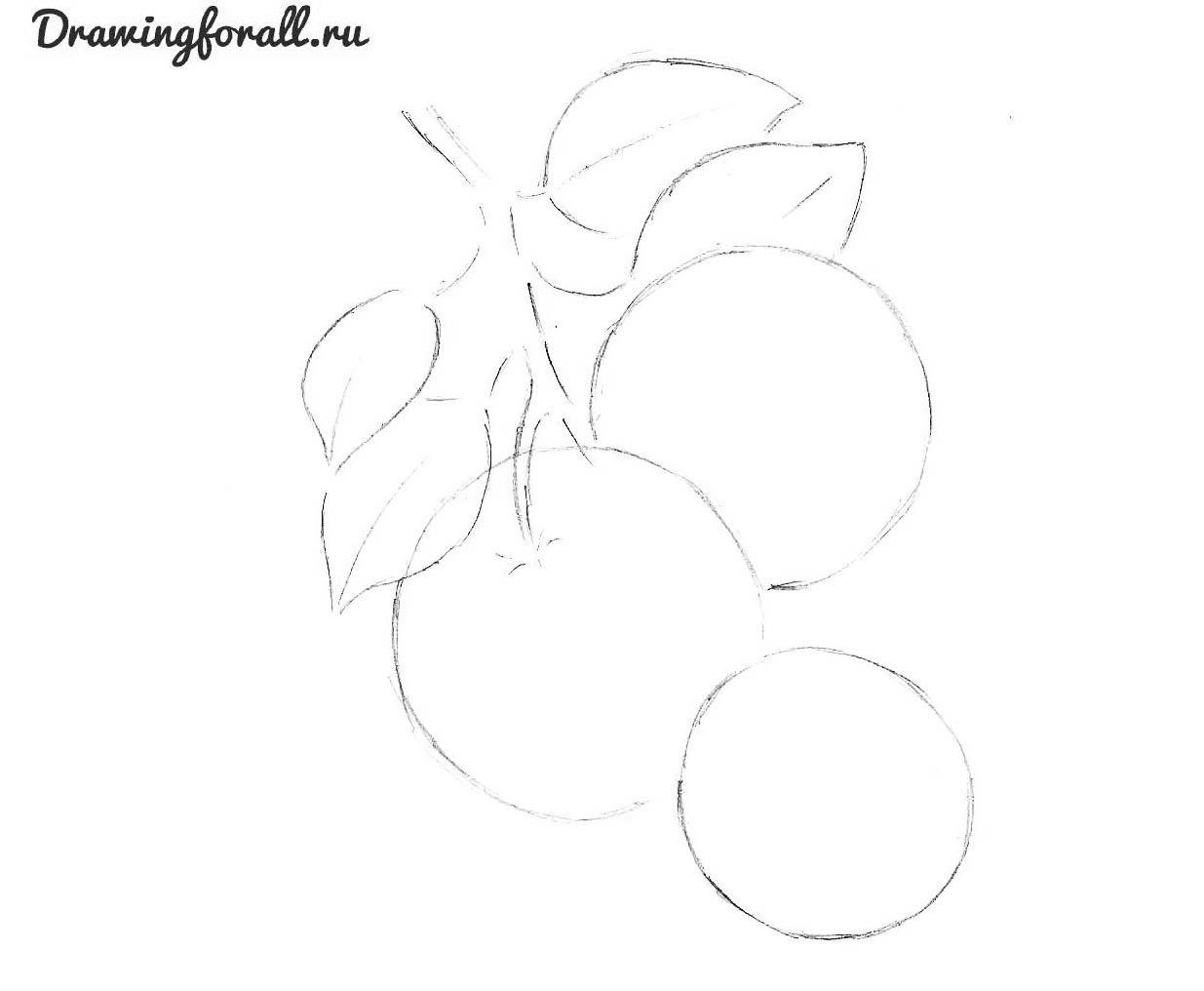 как нарисовать апельсин карандашом