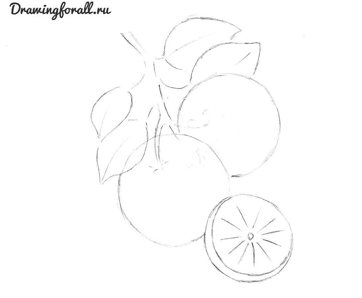 как нарисовать апельсин поэтапно