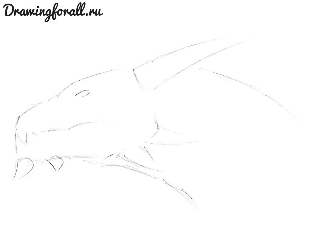 как нарисовать голову дракона карандашом