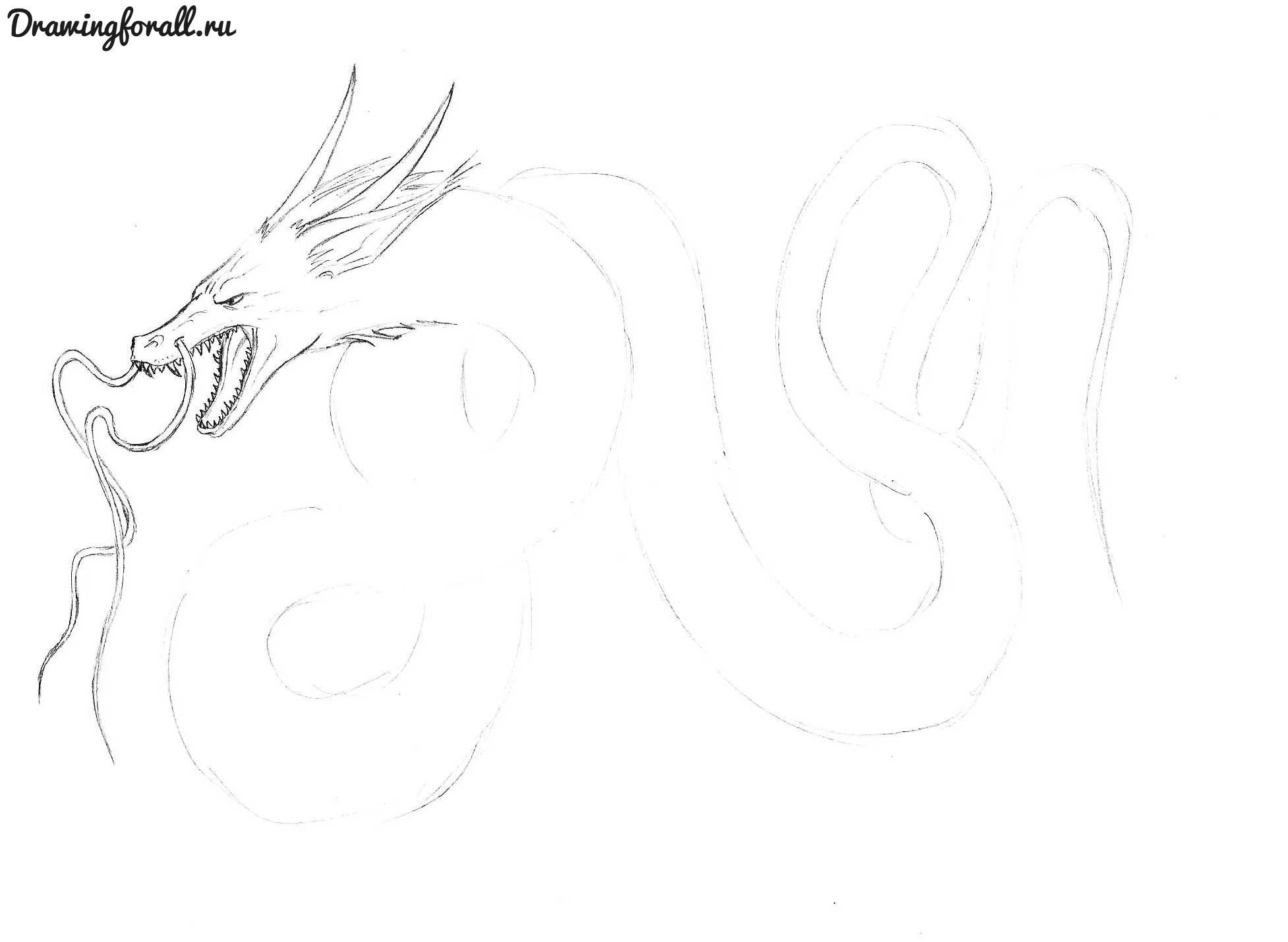 как нарисовать китайского дракона поэтапно