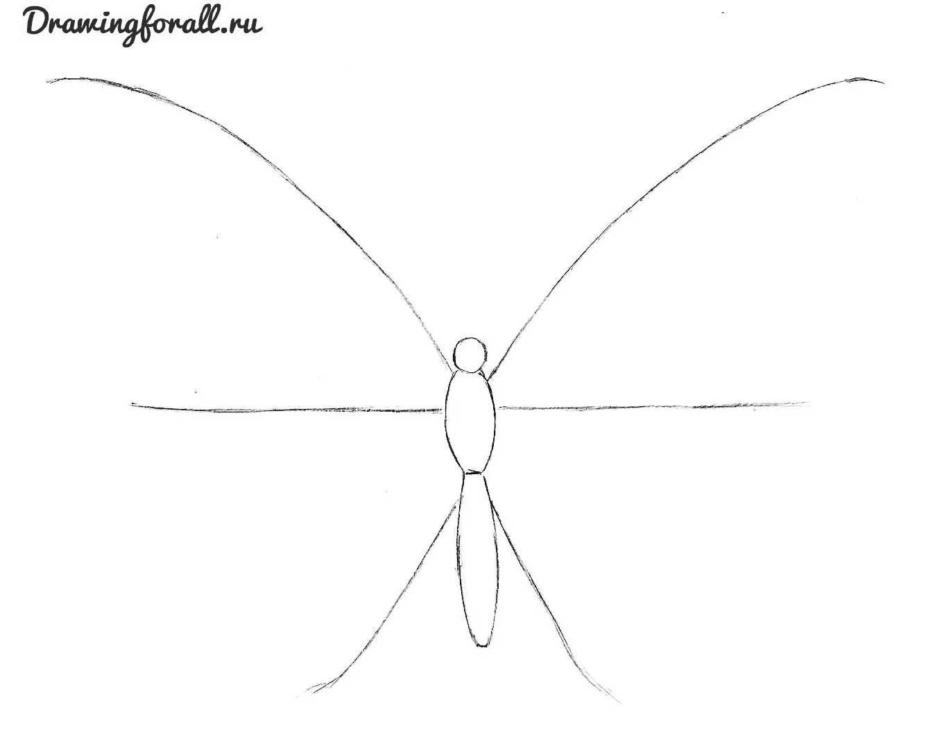 как нарисовать красивую бабочку поэтапно