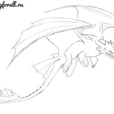 Как нарисовать беззубика из «Как приручить дракона»