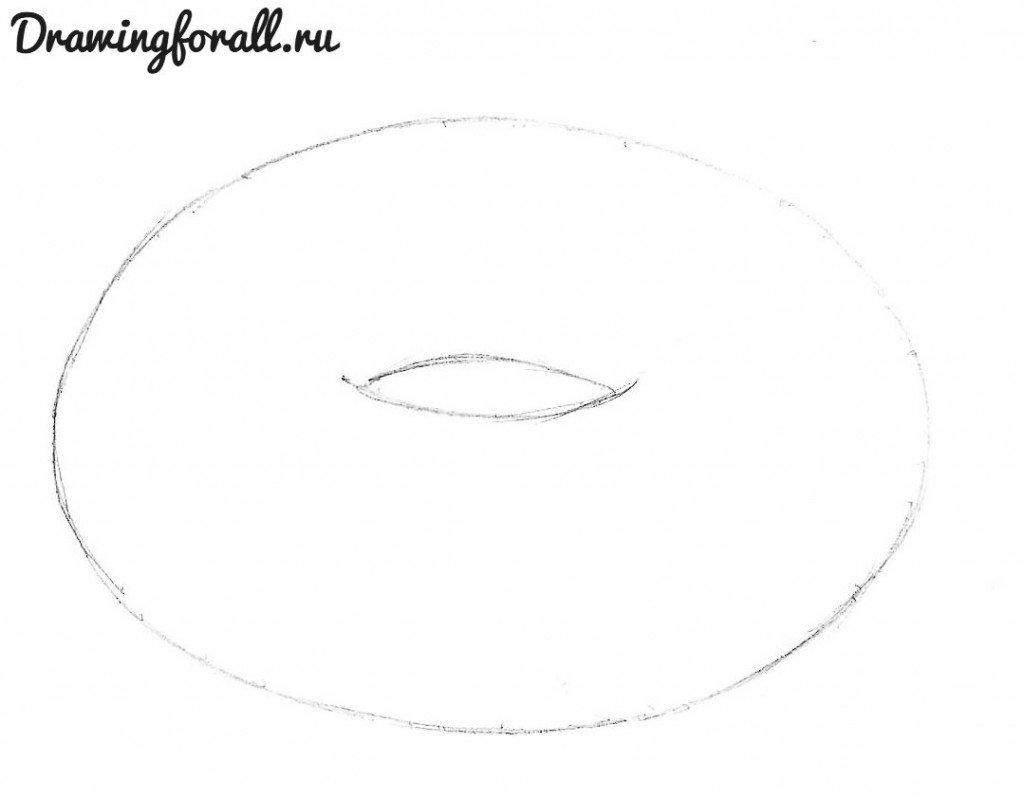 как нарисовать пончик карандашом поэтапно
