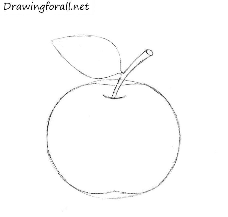 Contour Line Drawing How To : Нарисованное яблоко простым карандашом