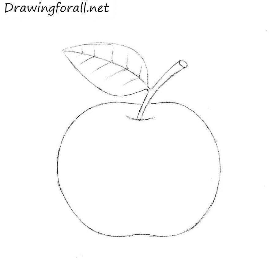 Как нарисовать яблоко для начинающих