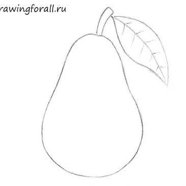 Как нарисовать грушу поэтапно для начинающих