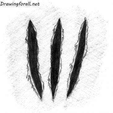 Как нарисовать следы от когтей поэтапно