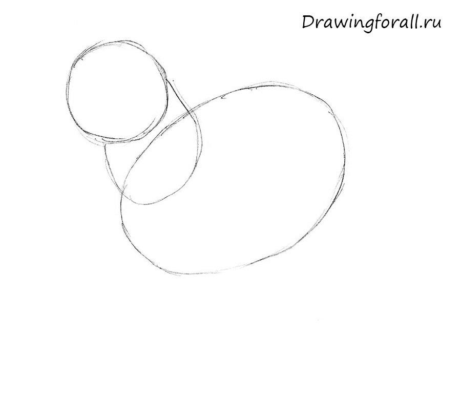 как нарисовать овцу ребенку