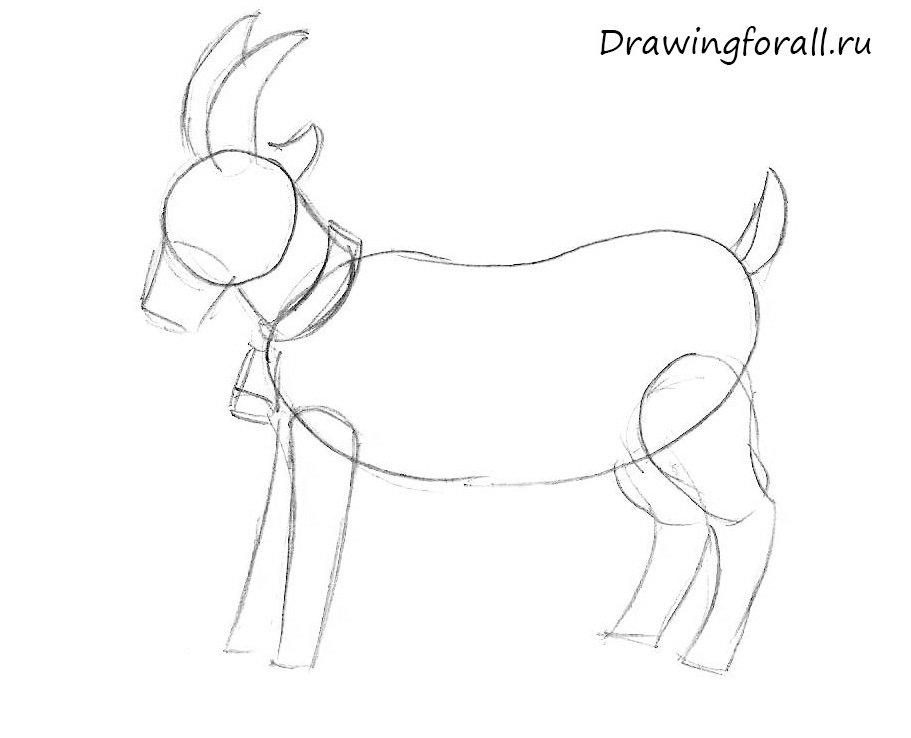 как нарисовать козу для ребенка