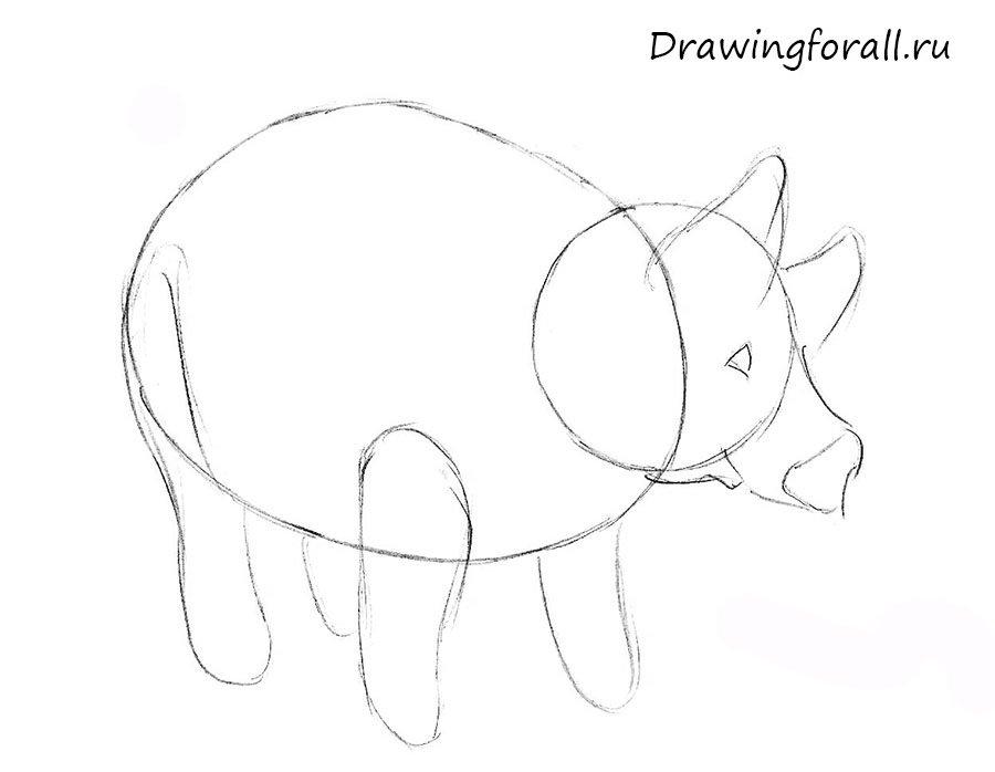 как нарисовать свинью для начинающих