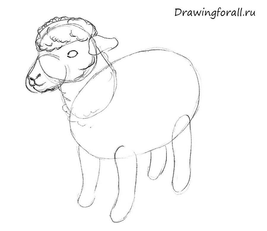 как нарисовать овечку ребенку