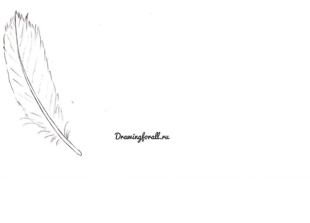 как нарисовать карандашом перо