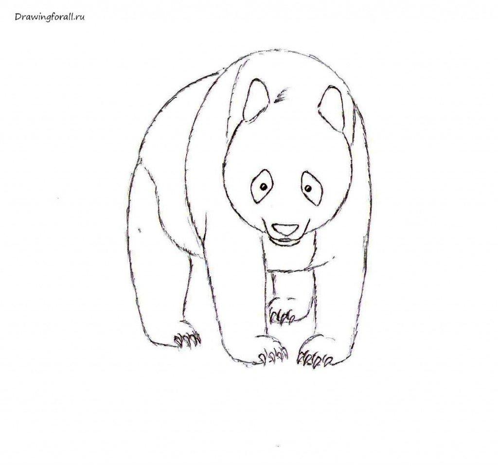 Как нарисовать милого панду