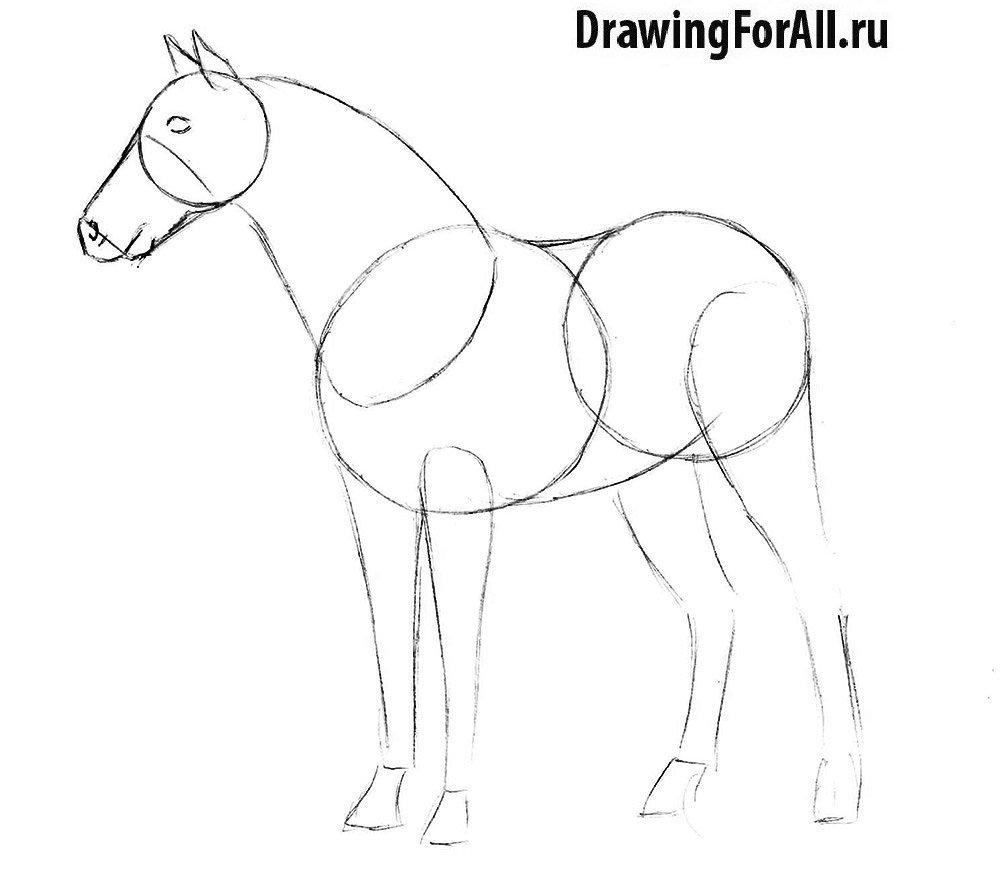 Как нарисовать лошадь карандашом легко