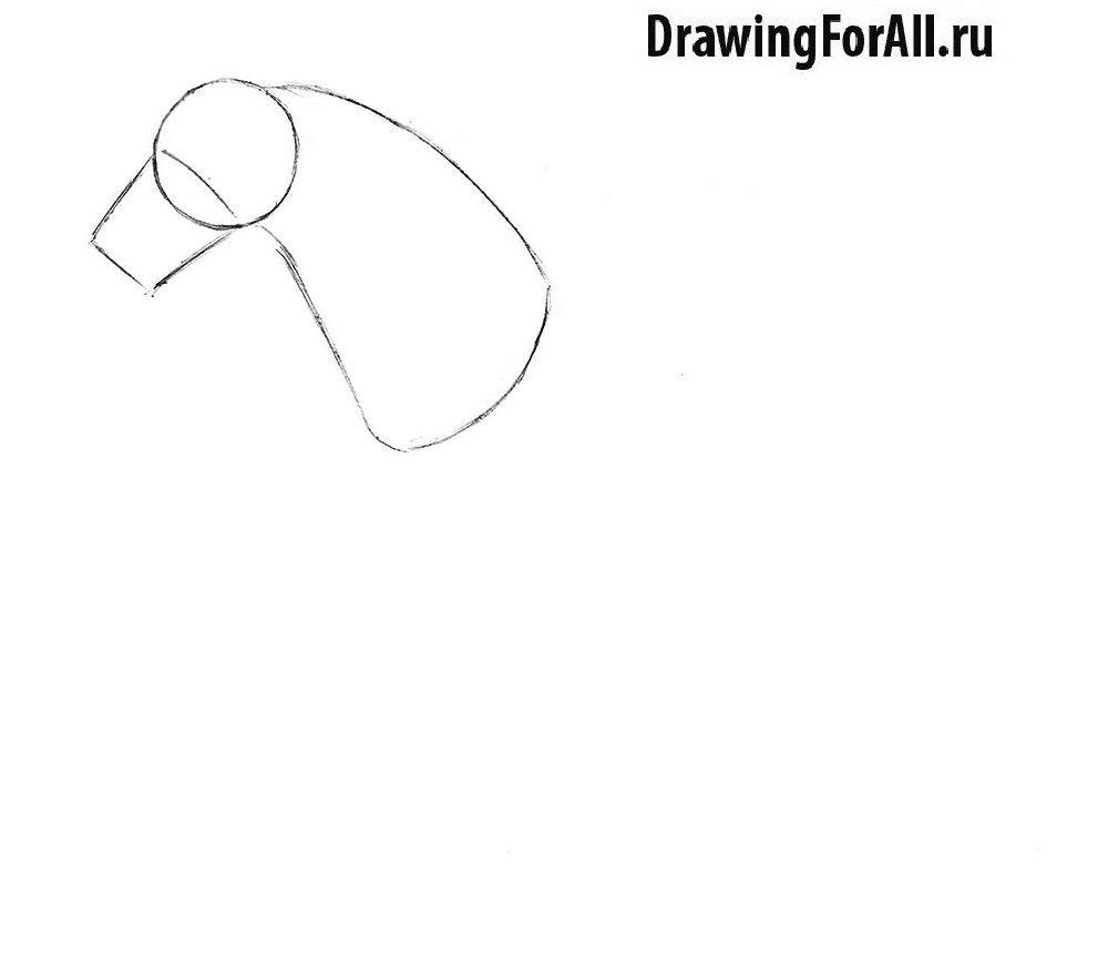 Как нарисовать лошадь легко