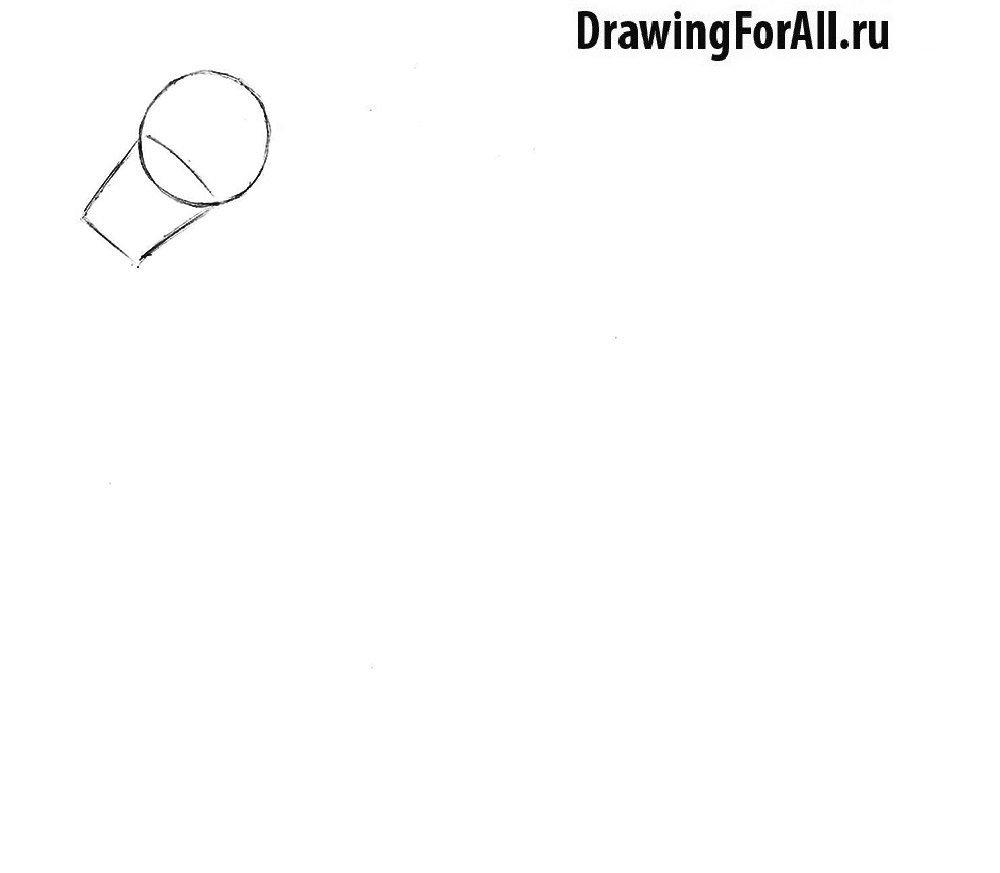 Как нарисовать лошадь поэтапно карандашом