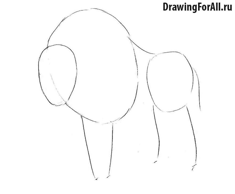 первый этап урока рисования бизона