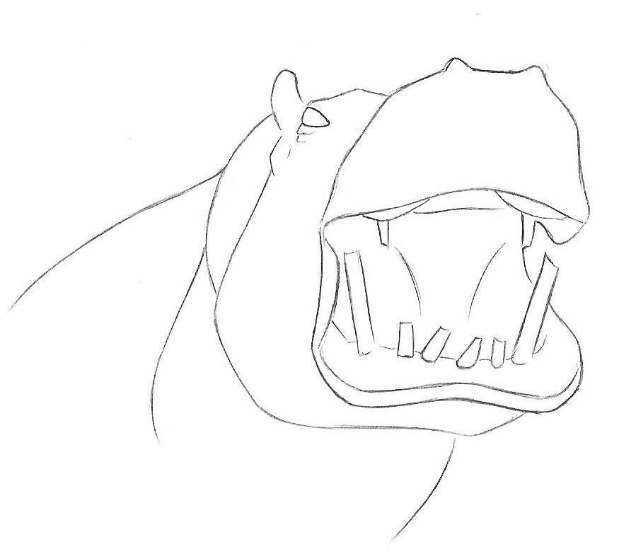 Как нарисовать бегемота для детей