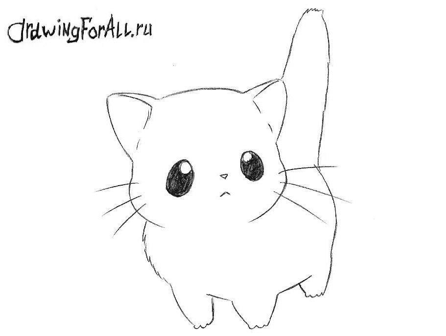 Как нарисовать Чиби Аниме кота