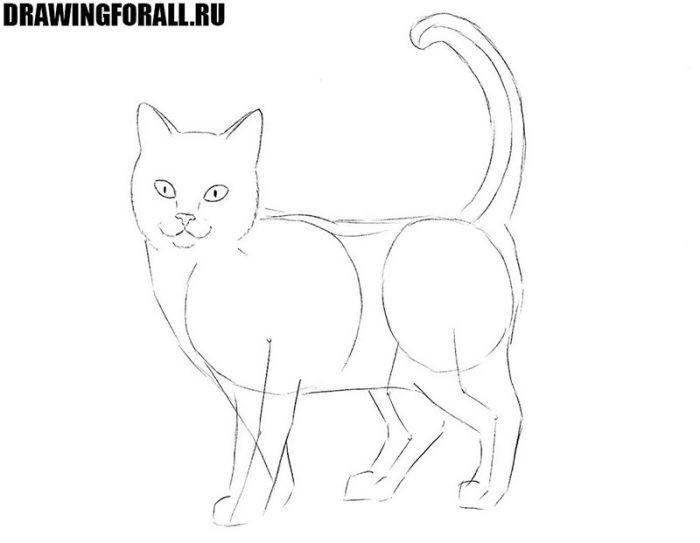 урок как нарисовать кошку